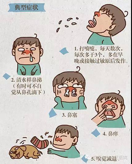 打喷嚏流鼻涕_虽然它们的症状比较相似,都有鼻痒,打喷嚏,流鼻涕等症状,但其实是有区