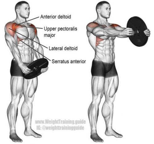 三角肌锻炼_从三角肌开始,三角肌前束锻炼方式