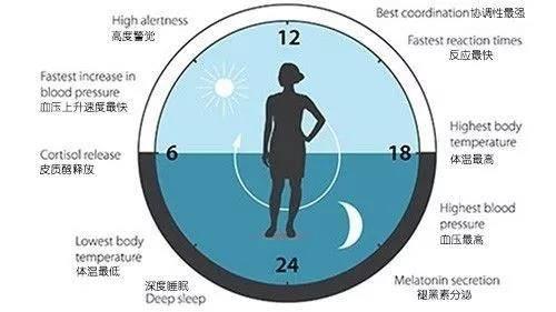 地球自转一周24小时,生物接收到的光照变化有固定周期.