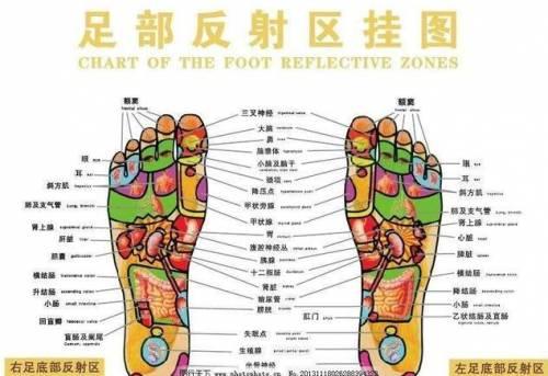 中医教您按摩足底6处穴位,养护心血管,预防心脑血管病