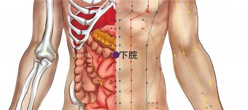 任督二脉:下脘穴,按3-5分钟消除腹痛腹胀、呕吐、消化不良