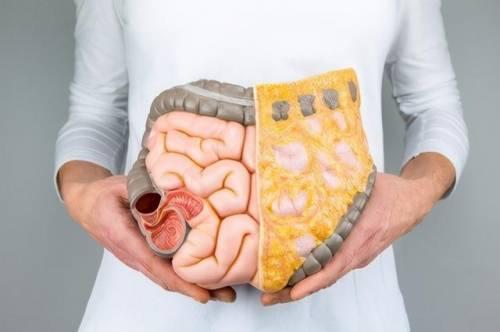 总便秘、几天上一次厕所?中医:这些中药能标本同治,补气润肠