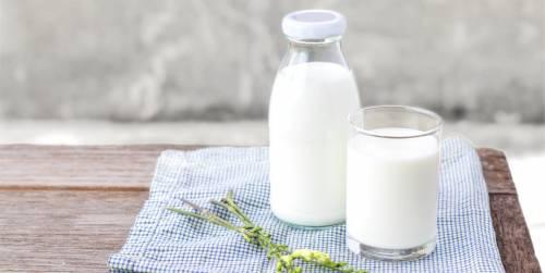 """""""现挤牛奶""""更有营养吗?小心感染布氏杆菌病"""