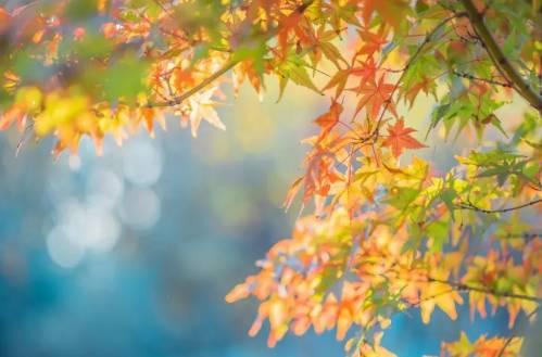 消化科专家谈秋季嘴唇干裂要注意