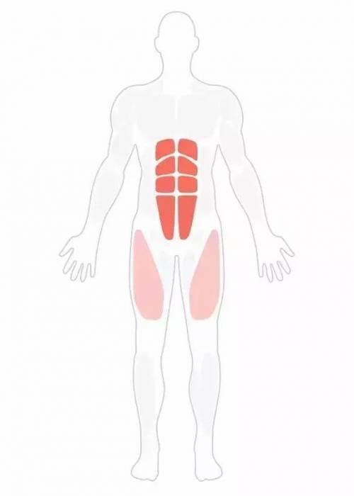 练习这三个步骤,胖子也能练出腹肌
